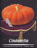 Cinderella, seeds, picture, image, french, heirloom, variety