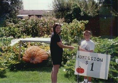 Pumpkin Economics